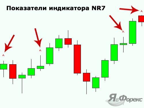 индикатор nr7