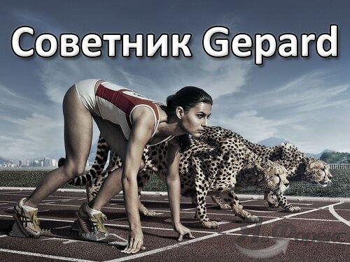 советник gepard