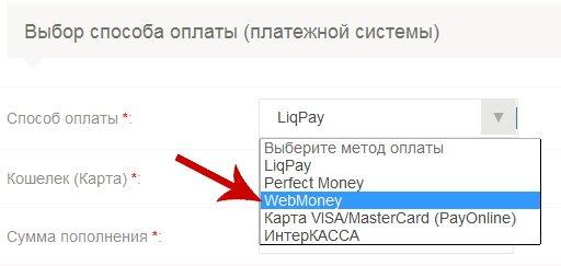 способы оплаты пантеон финанс