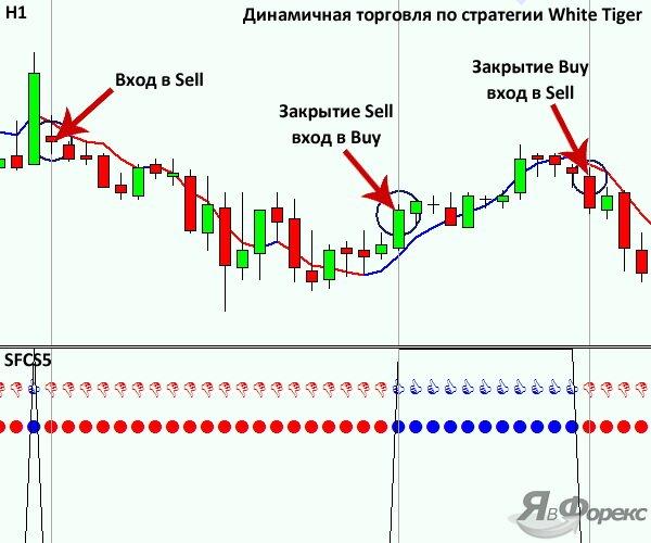 динамичная тактика индикаторной стратегии