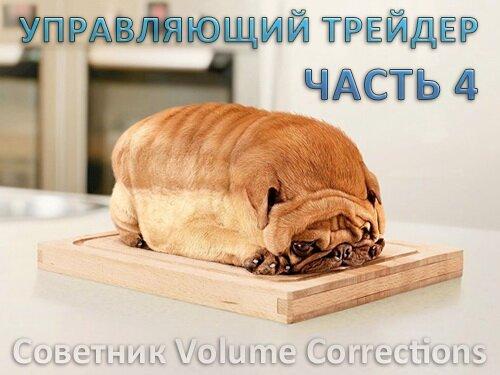 советник volume corrections