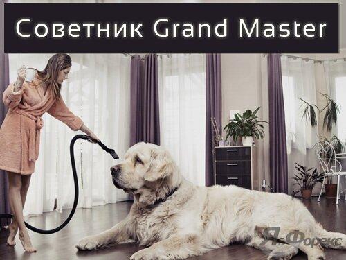 советник grand master